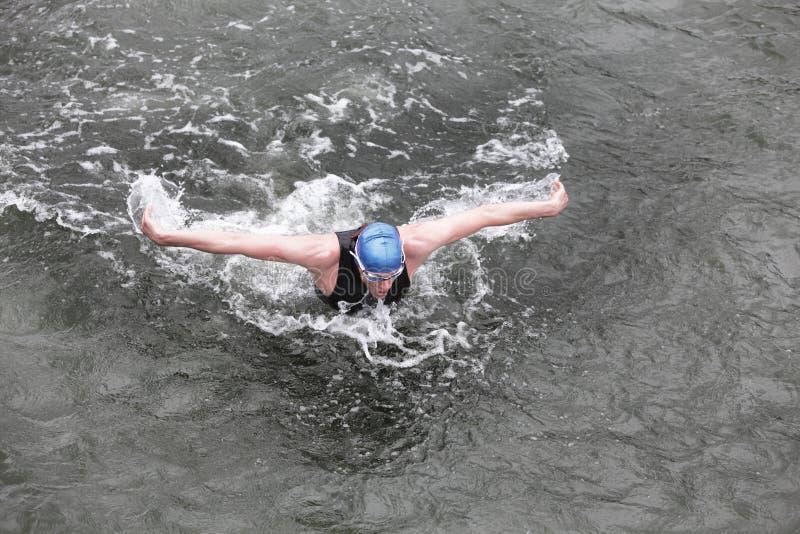 Järnman - simmare som utför fjärilsslaglängden i mörkt havvatten royaltyfria foton