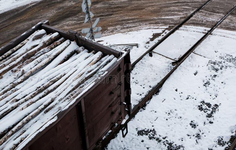 Järnväg bilar som laddas med skogen, drevet, transporterar träd Många olika bilar arkivbilder