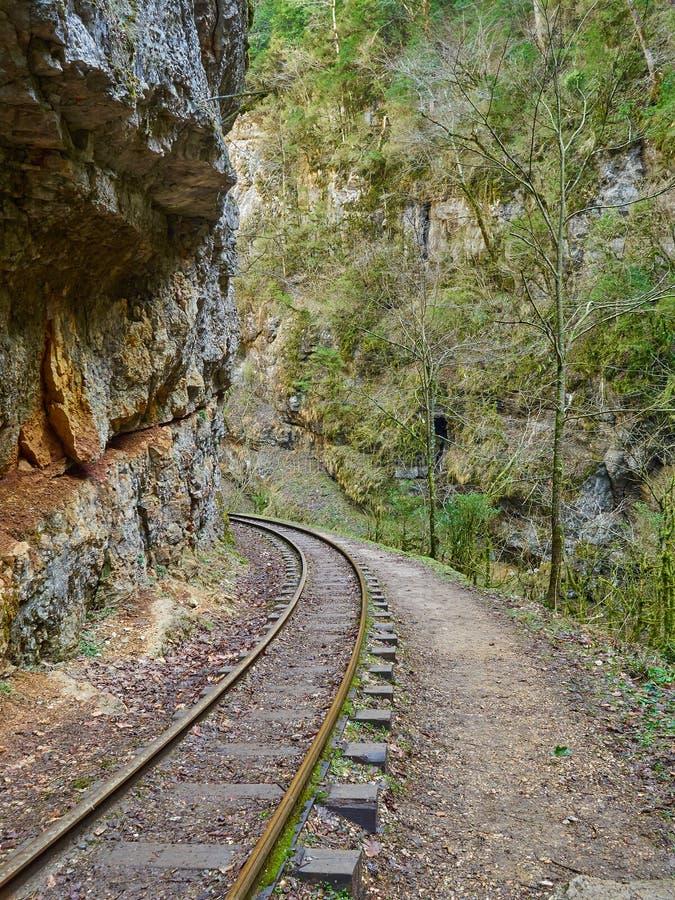 Järnväg för smalt mått i berg av norr Kaukasus fotografering för bildbyråer