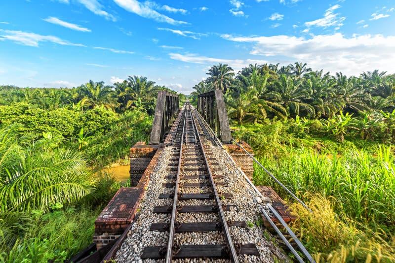 Järnväg från Singapore till Bangkok i djungeln av Malaysia royaltyfri foto