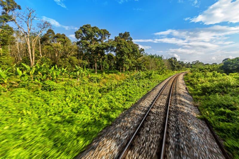 Järnväg från Singapore till Bangkok i djungeln av Malaysia royaltyfri bild