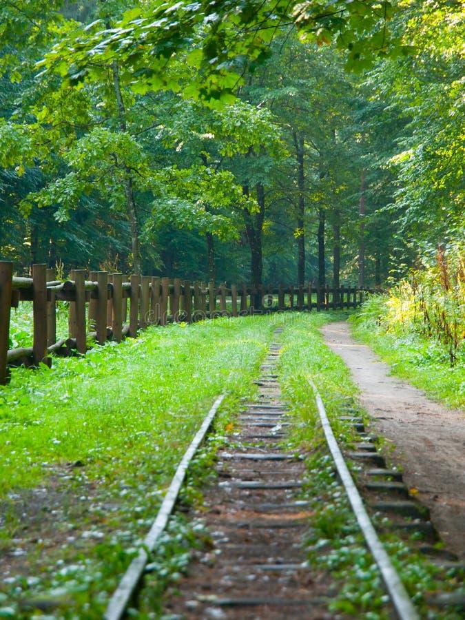 Järnväg i skogen royaltyfria foton