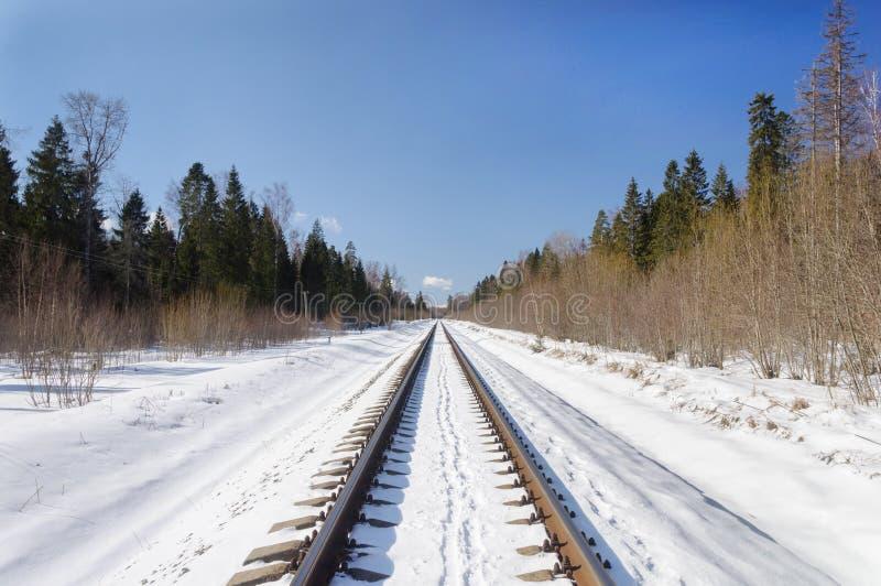 Järnväg linje i vinterskog royaltyfri foto