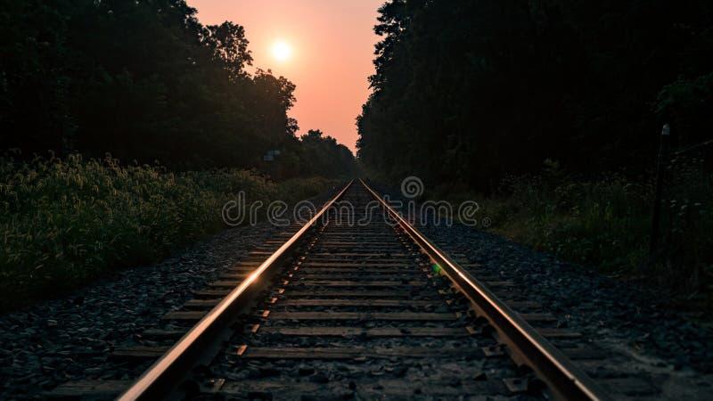 Järnväg på soluppgångklipp till och med skogen arkivfoton