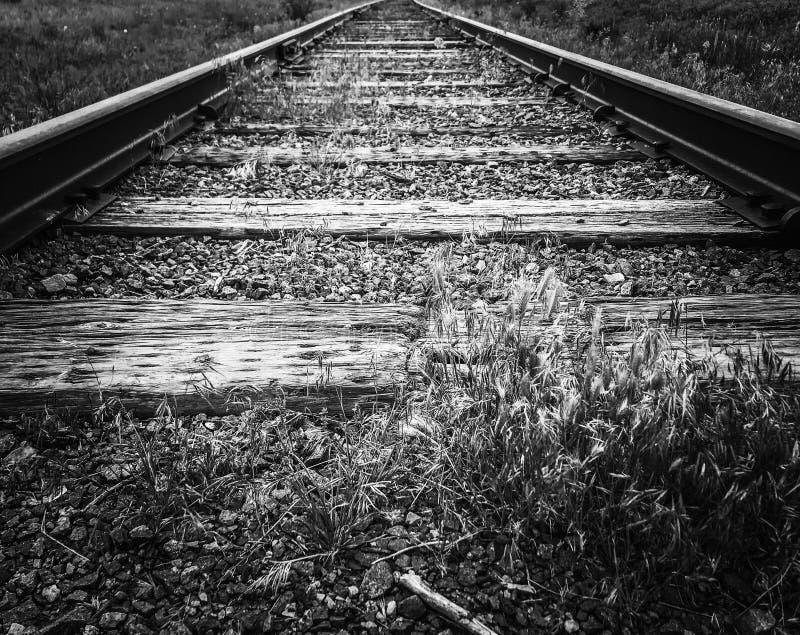 Järnväg spårar ledande linjer arkivfoton