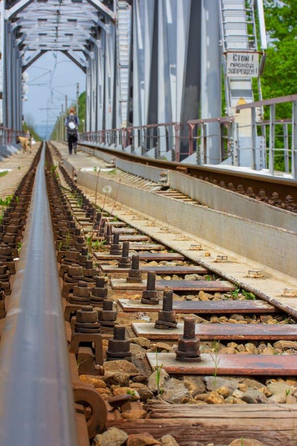 Järnväg stång för närbild och en pojke och en hund som bort går på järnvägsbron royaltyfri foto