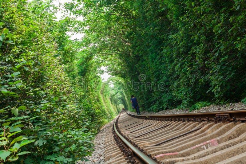 Järnväg tunnel arkivbild