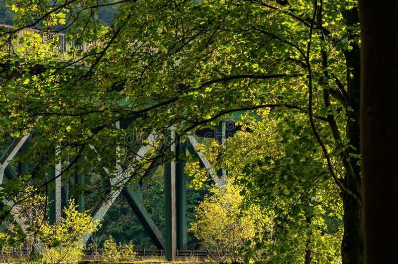 Järnvägsbro av stål bak träd över Ruhren i Essen, område Kettwig arkivbilder