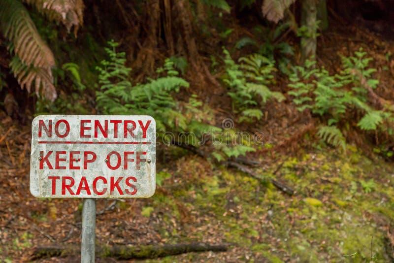 Järnvägslinjen i en regnskog i Srahan Tasmania Australien arkivbilder