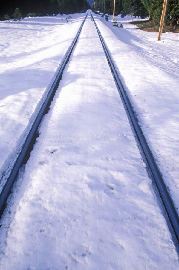 Järnvägspår i den insnöade monteringen Shasta, Kalifornien fotografering för bildbyråer