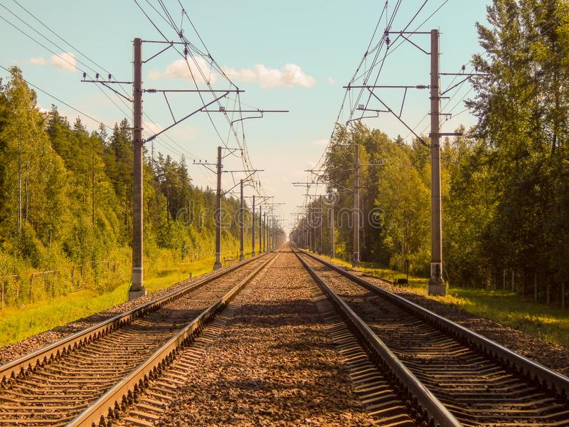 Järnvägsspår i skogen på en solig sommardag royaltyfri foto
