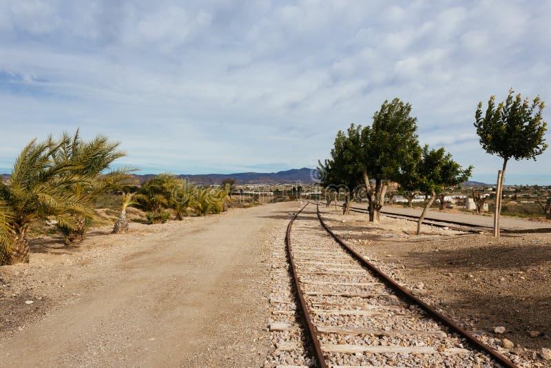 Järnvägsspår med planterade träd arkivbilder