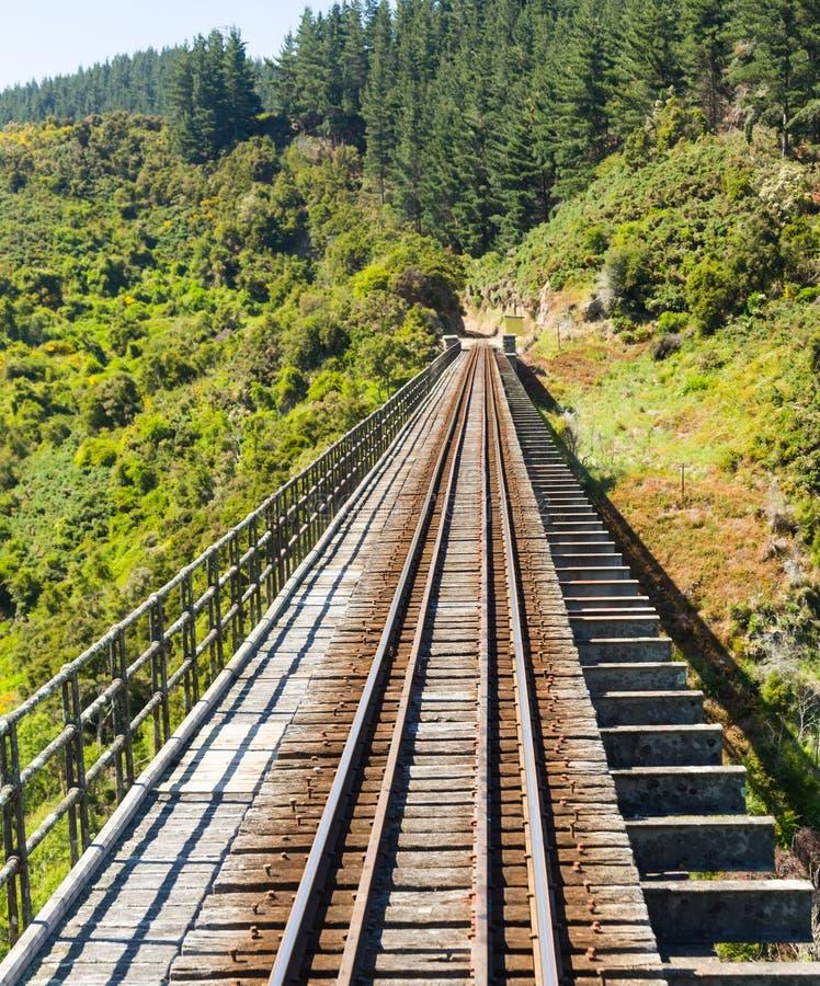 Järnvägsspår upp den Taieri klyftan Nya Zeeland arkivfoto