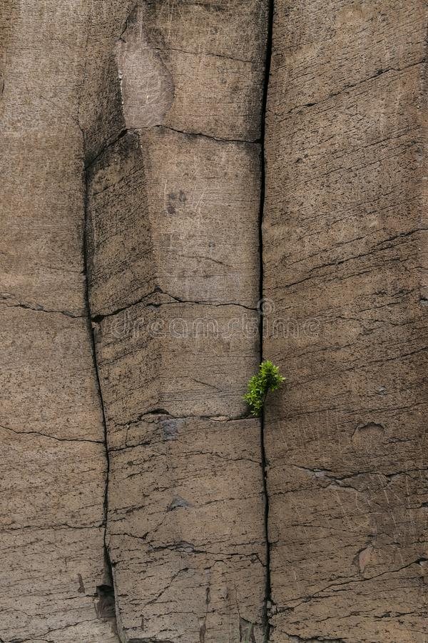 Jätte- basaltkolonner på La Gomera, kanariefågelö, Spanien fotografering för bildbyråer