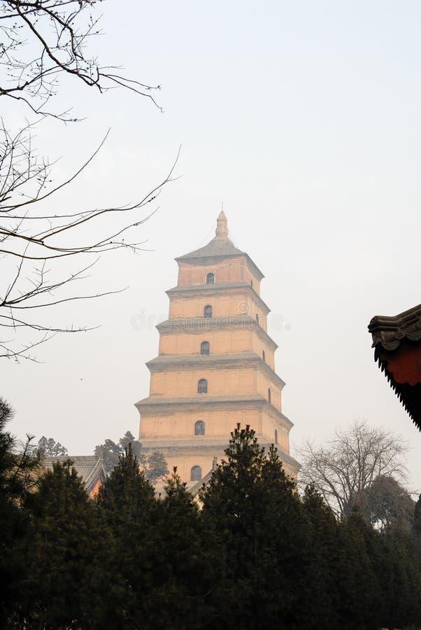 Jätte- lös gåspagod, XI `, Kina royaltyfri fotografi