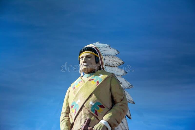 Jätte- staty av en indisk chef arkivbild
