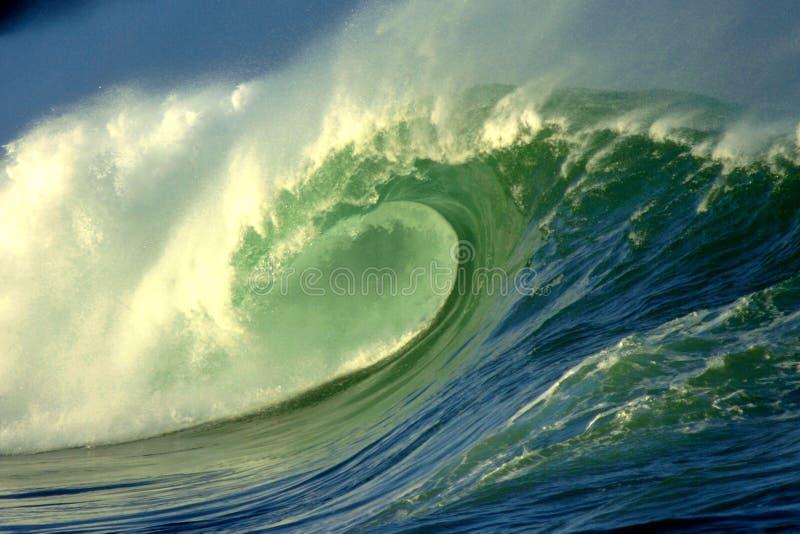 jätte- wave royaltyfri fotografi