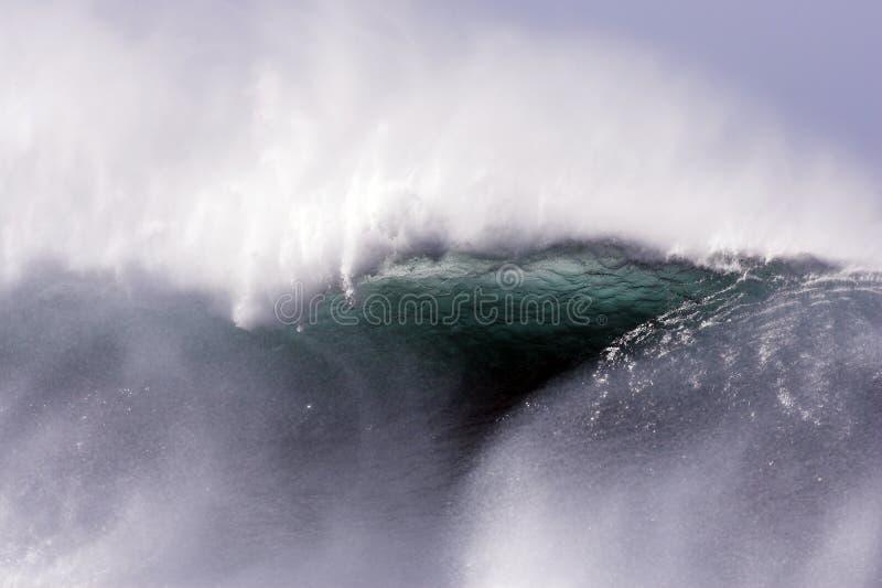 jätte- wave arkivbilder