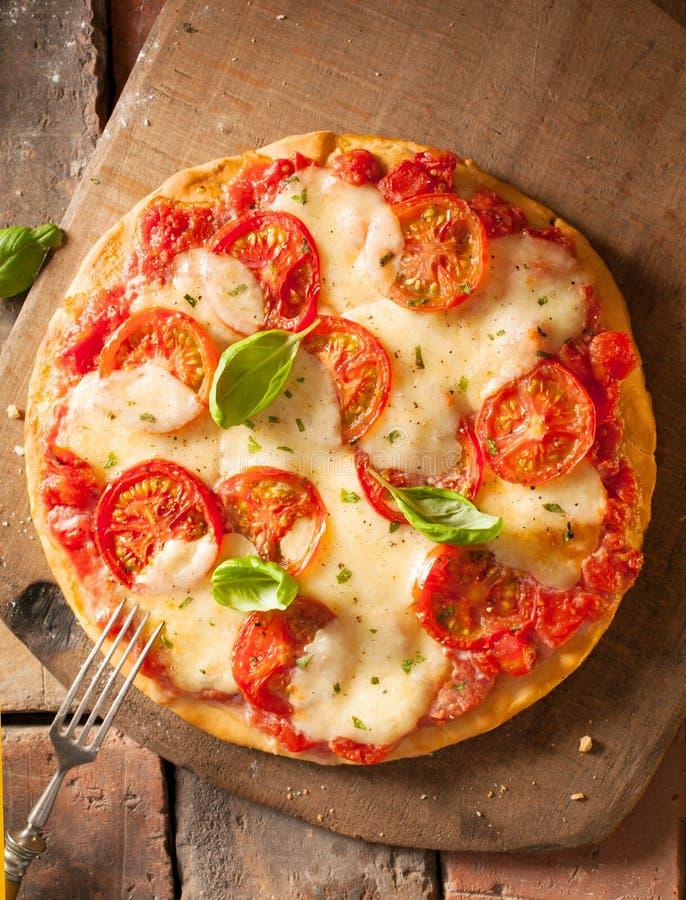 Jättegod ny ost- och tomatpizza royaltyfri foto