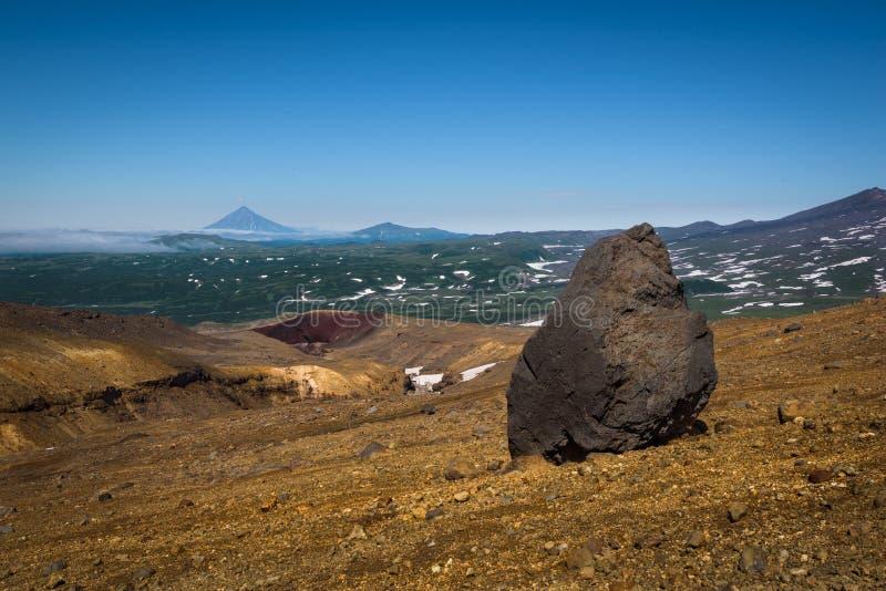 Jätten vaggar på de steniga lutningarna av den Mutnovsky vulkan royaltyfri bild