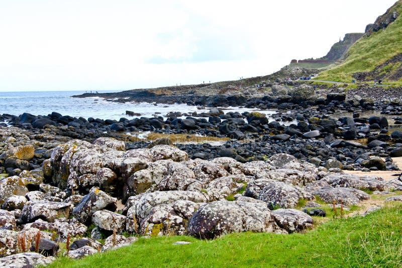 Jättevägbank och Clifffs som är nordliga - Irland royaltyfria bilder