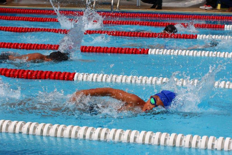 Jérsei do estilo livre da natação A competição da natação imagens de stock