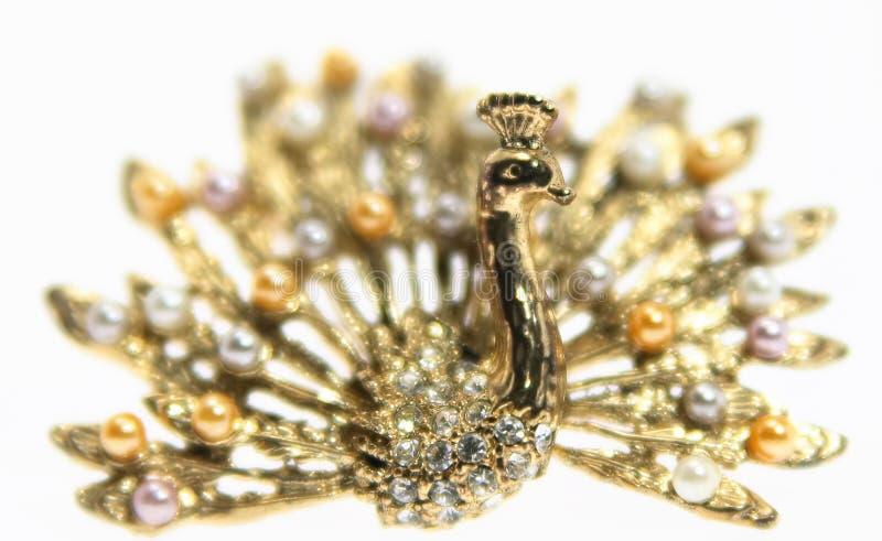 Jóia do ouro isolada no pavão branco do fundo sh fotografia de stock royalty free