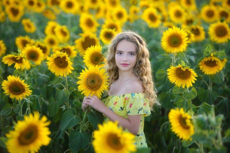 Jóvenes hermosos en el campo de girasoles foto de archivo