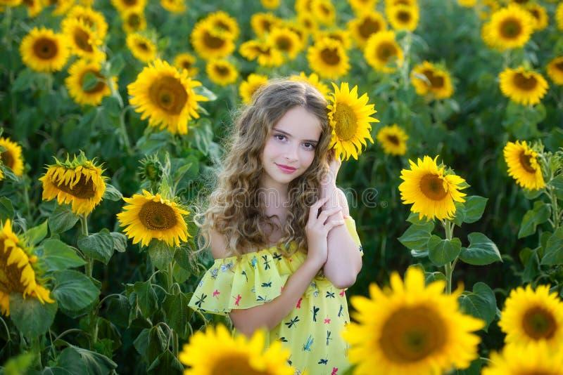 Jóvenes hermosos en el campo de girasoles fotografía de archivo