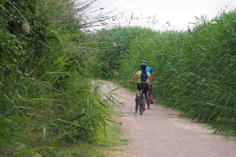 Júntese de los ciclistas que toman un paseo en el lago, Lérida foto de archivo