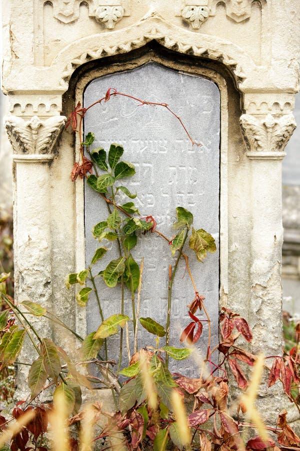 Jüdischer Grundstein blüht Steinsymbol embem Hintergrundkirchhof alte granit Marmor-Gussbuchstaben stockbild