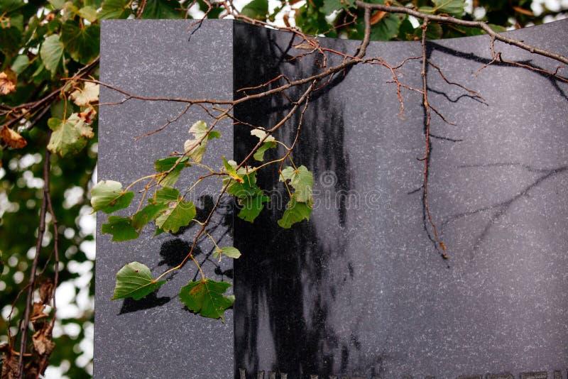 Jüdischer Grundstein blüht Steinsymbol embem Hintergrundkirchhof alte granit Marmor-Gussbuchstaben stockbilder