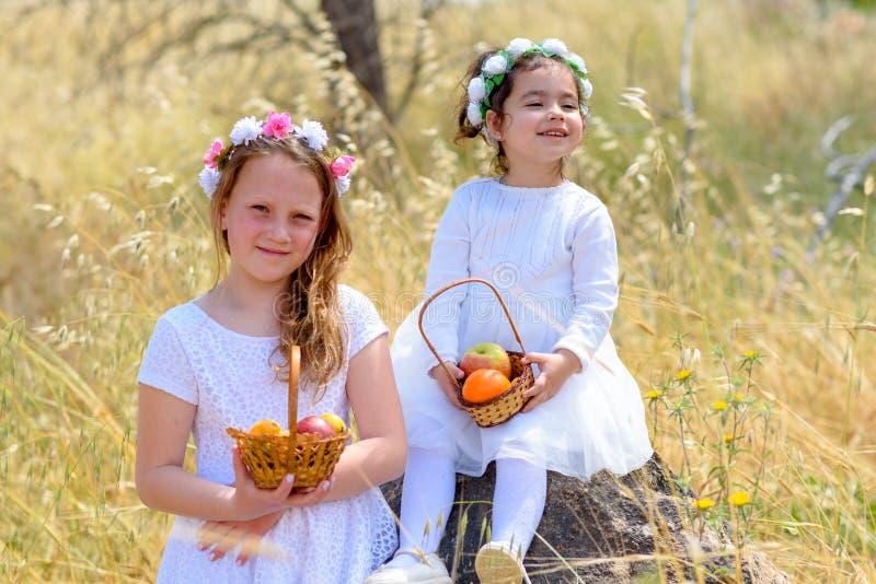 J?discher Feiertag Shavuot Kleine Mädchen HarvestTwo im weißen Kleid hält einen Korb mit frischer Frucht auf einem Weizengebiet stockfotos