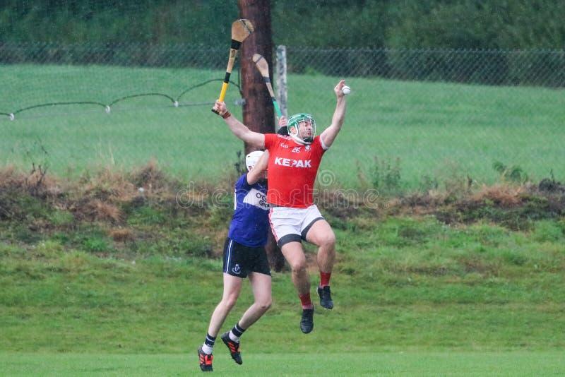 J A Rzucać mistrzostwo: Sarsfield VS Watergrasshill w Carrignavar, Irlandia obraz royalty free