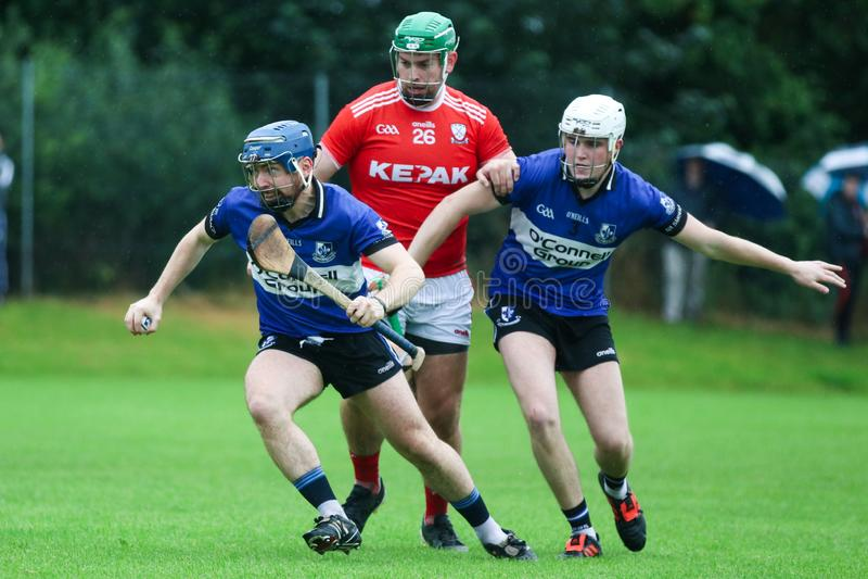 J A Rzucać mistrzostwo: Sarsfield VS Watergrasshill w Carrignavar, Irlandia zdjęcie stock