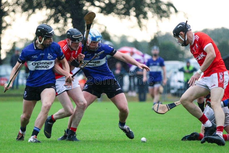 J A Rzucać mistrzostwo: Sarsfield VS Watergrasshill w Carrignavar, Irlandia obrazy royalty free