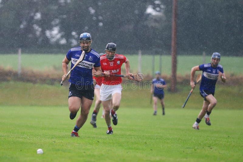 J A Rzucać mistrzostwo: Sarsfield VS Watergrasshill w Carrignavar, Irlandia fotografia royalty free