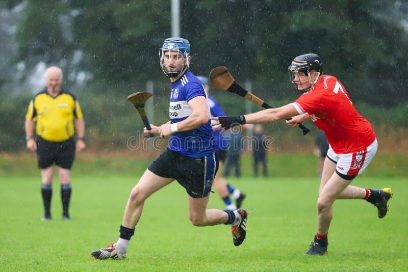 J A Rzucać mistrzostwo: Sarsfield VS Watergrasshill w Carrignavar, Irlandia fotografia stock