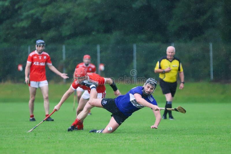 J A Rzucać mistrzostwo: Sarsfield VS Watergrasshill w Carrignavar, Irlandia zdjęcia royalty free