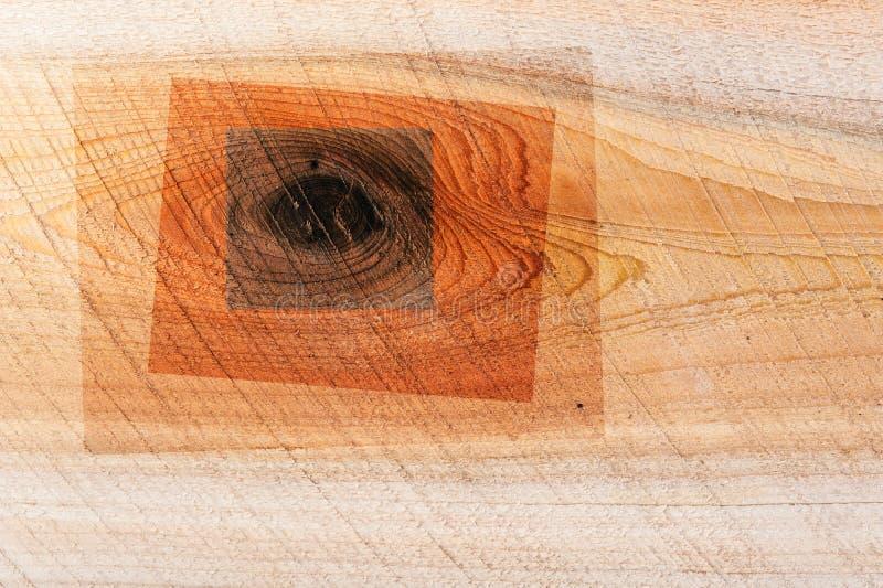 Jałowcowy drewniany tekstury tło z starym naturalnym wzorem Grunge nawierzchniowy nieociosany drewniany tło zdjęcie royalty free