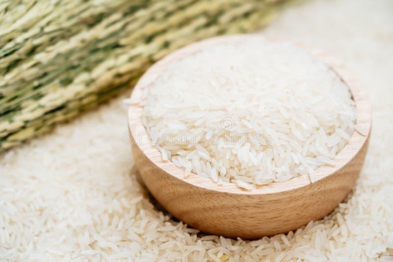 jaśminowi ryż obraz royalty free