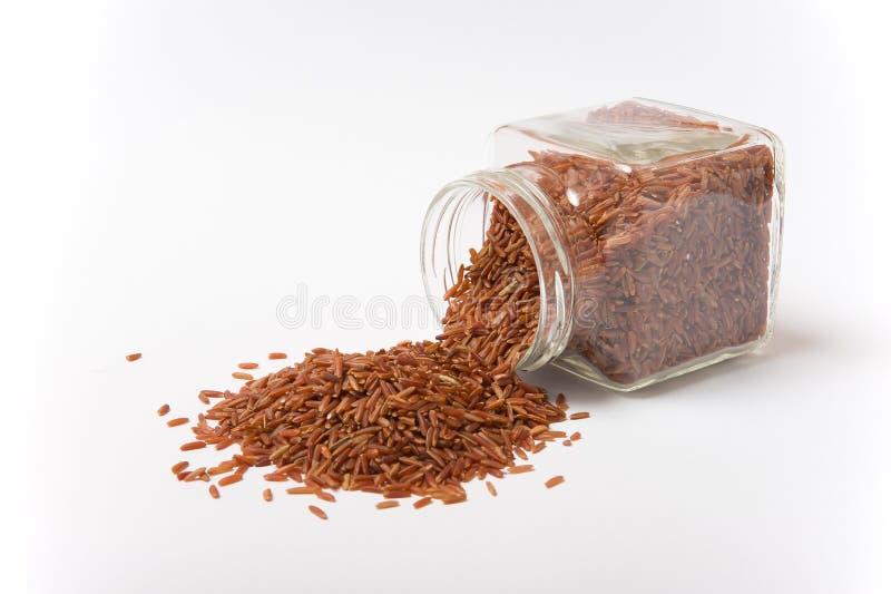 Jaśminowy Brown Rice w szklanym słoju fotografia stock