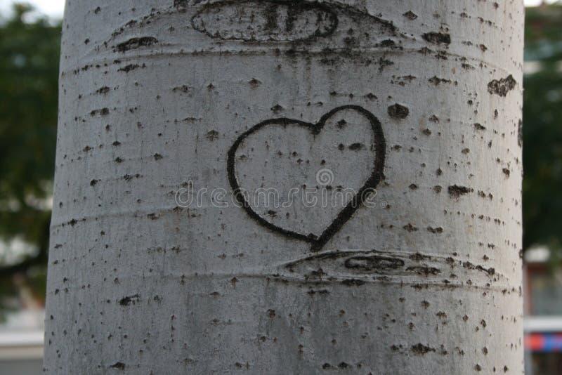 Ja serce Ty zdjęcie royalty free