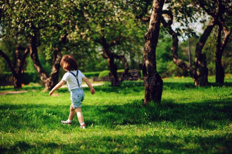 3 jaar de oude van het peuterkind jongens die alleen in de lente of de zomergang in tuin lopen royalty-vrije stock afbeelding