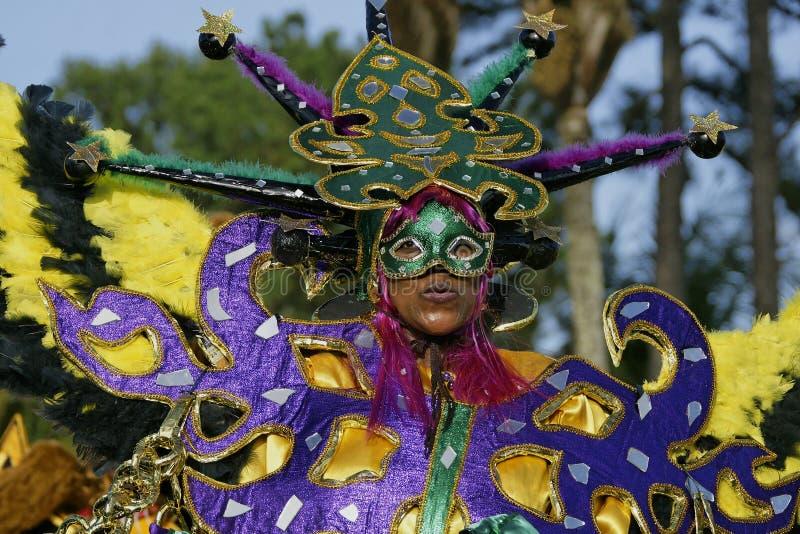 Jaarlijks Carnaval 2011 van Frans Guyana royalty-vrije stock fotografie