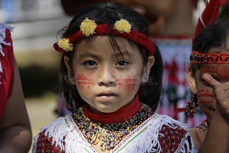 Jaarlijks Carnaval 2011 van Frans Guyana royalty-vrije stock afbeelding