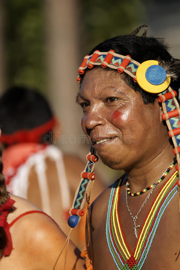 Jaarlijks Carnaval 2011 van Frans Guyana royalty-vrije stock foto