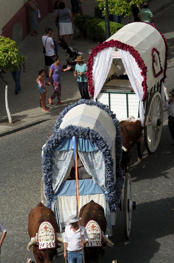 Jaarlijkse viering van het Patroonheilige in Carmona 36 stock afbeeldingen