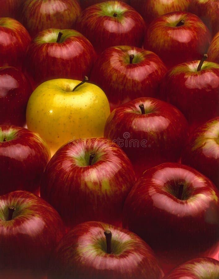 jabłka jeden czerwony żółty obraz stock