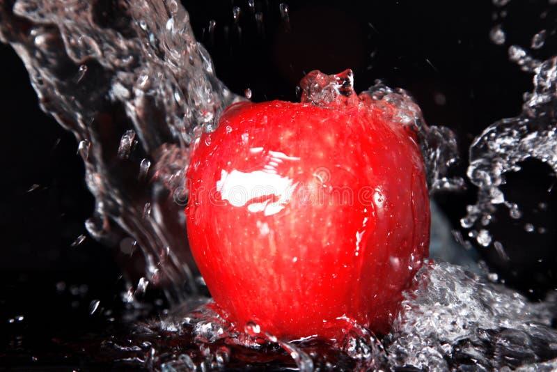 jabłczana świeża czerwień fotografia royalty free
